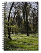 Forest In Spring Spiral Notebook