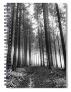 Forest In The Mist Spiral Notebook