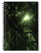 Forest Light Spiral Notebook