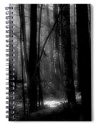 Forest Light In Black And White Spiral Notebook