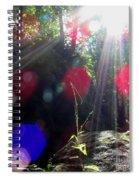 Forest Lightscape Spiral Notebook