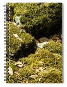 Forest Moss Spiral Notebook