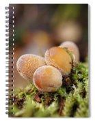 Forest Mushrooms Spiral Notebook