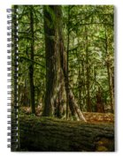 Forest Of Cathedral Grove Collection 1 Spiral Notebook