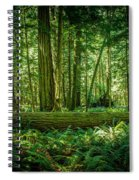 Forest Of Cathedral Grove Collection 7 Spiral Notebook