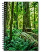 Forest Of Cathedral Grove Collection 8 Spiral Notebook