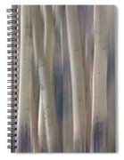 Forest Of Dreams 2  Panorama Spiral Notebook