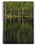 Forest Of Reflection Spiral Notebook