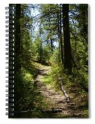 Forest Path In Spokane 2014 Spiral Notebook