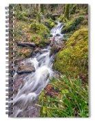 Forest Rapids Spiral Notebook