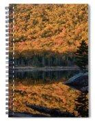 Forest Reflection Spiral Notebook