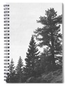 Forest Ridge Spiral Notebook