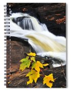 Forest River In The Fall Spiral Notebook
