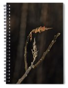 Forest Song Spiral Notebook
