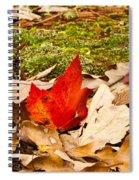 Forest Still Life 5 Spiral Notebook