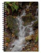 Forest Stream Cascade Spiral Notebook