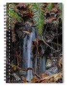 Forest Streamlet Spiral Notebook