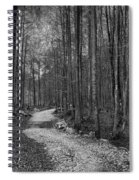 Forest Trail Bw Spiral Notebook