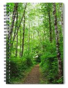 Forest Trail To Follow Spiral Notebook