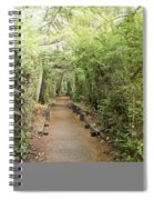 Forest Walk Spiral Notebook