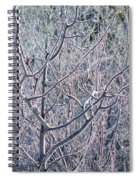 Forests Of Frost Spiral Notebook