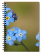 Forget Me Not 01 - S01r Spiral Notebook