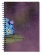 Forget Me Not 02 - S0304bt02b Spiral Notebook