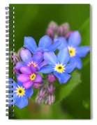 Forget-me-not Stylized Spiral Notebook