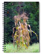 Forgotten Corn Stalks Spiral Notebook