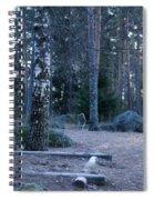 Forgotten Playground Spiral Notebook