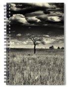Forgotten Tree Spiral Notebook