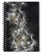 Forgotten Wishes Spiral Notebook