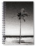 Fort Lauderdale Palm Tree Spiral Notebook
