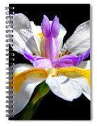Fortnight Lily Spiral Notebook