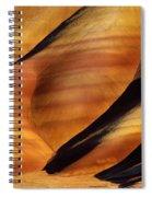 Fossilscape Spiral Notebook