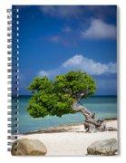 Fototi Tree - Aruba Spiral Notebook