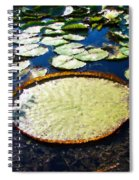 Foul Ball And The Lily Pads Spiral Notebook