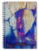 Foundation Number Eleven Spiral Notebook