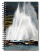 Fountain Geyser Yellowstone Np Spiral Notebook
