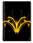 Fountain Of Gold Spiral Notebook