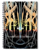 Fountain Of Happiness Spiral Notebook