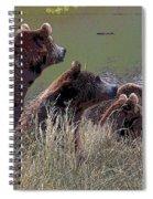 Four Bears Spiral Notebook