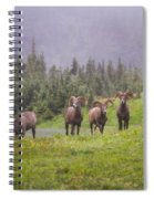 Four Brothers Spiral Notebook