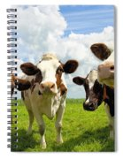 Four Chatting Cows Spiral Notebook