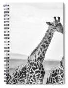 Four Giraffes Spiral Notebook