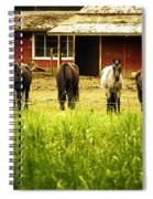 Four Horses Spiral Notebook