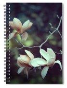 Four Magnolia Flower Spiral Notebook