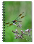 Four-spotted Pennant Spiral Notebook