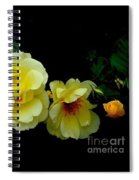 Four Stages Of Bloom Of A Yellow Rose Spiral Notebook