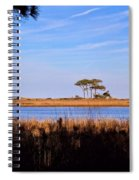 Four Trees H Spiral Notebook